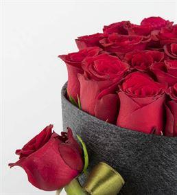 Sasa Mila Kutuda 20 Kırmızı Güller