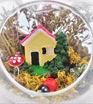 Pembe Çatılı Evimiz Kuru Çiçek Teraryum-Ebame0019
