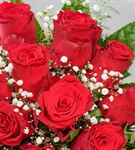 Aşkını Göster 15 Kırmızı Güller