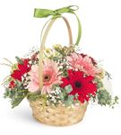 Baharın Renkleri Çiçek Sepeti