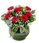 Cam Fanus Aşkın Adı 7 Kırmızı Güller