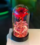 Cam Fanus Sevgililer Günü Mesaj Lamba Kırmızı Gül