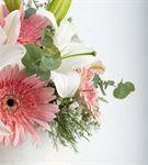 Cansano Kutu Beyaz Lilyum ve Pembe Gerberalar