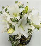 Carracci Kutu Dolusu Kokulu Beyaz Lilyumlar