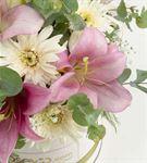 Casablanca Kutuda Tatlı Ayıcık ve Kokulu Çiçekler