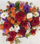 Costa Brava Flowers
