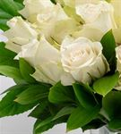 Dekoratif El Yapımı Vazoda 25 Beyaz Gül Aranjmanı