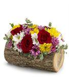 Doğal Kütükte Mevsim Çiçekleri Aranjmanı