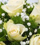 Fanusta Mutluluk 9 Beyaz Gül Aranjmanı