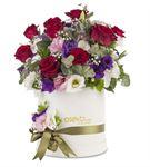 Halkidiki Colour Flowers