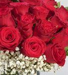 İhtiraslı Aşk 25 Kırmızı Güller