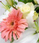 La Vega Serisi Mis Kokulu Bahar Çiçekleri Aranjman