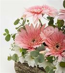 Manzori Kütükte Kır Çiçekleri Aranjmanı