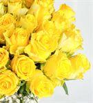 Mutluluğun Sırrı 50 Sarı Güller