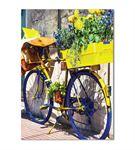 Nostaljik Bisiklet Serisi A Kanvas Tablo 50x70 cm