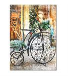 Nostaljik Bisiklet Serisi B Kanvas Tablo 60x90 cm