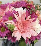 Pembe Düşler Çiçek Aranjmanı