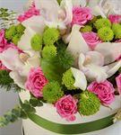 Renk Karnavalı Kutuda Çiçekler