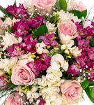Rich Mixed Roses