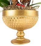 Rita Serisi Mini Mor Orkideler - Gold