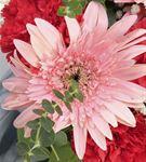 Romantik Renkler Sonbahar Aranjmanı