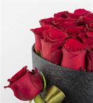 Sasa Mila 20 Kırmızı Güller