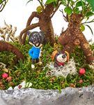 Taş Saksıda 3 Köklü Bonsai Ağacı Aranjmanı