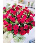Vazoda Kırmızı Güller