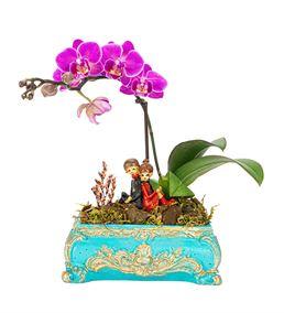 Chest Serisi Tek Dal Mini Orkide Tasarım -Turkuaz