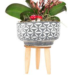 Three Legs Tek Dal Mini Mor Orkide Tasarım Çiçek