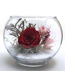 Akvaryum Vazoda Kırmızı Solmayan Gül Aranjmanı
