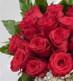 Aşk Kırmızısı 25 Kırmızı Güller