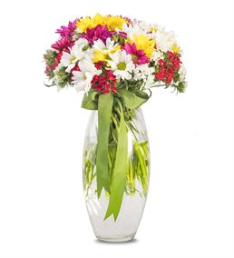Baharın Habercisi Mevsim Çiçekleri