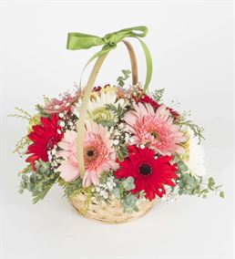 Baharın Renkleri Gerbera Çiçek Sepeti