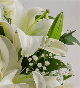 Beyaz Güzellik Kokulu Çiçek Aranjmanı