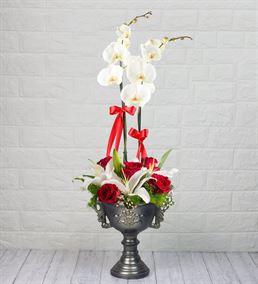 Beyaz Orkide, Kazablanka Ve Gül Aranjmanı
