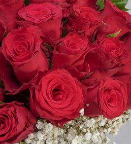 Bir Sevda Masalı 20 Kırmızı Güller
