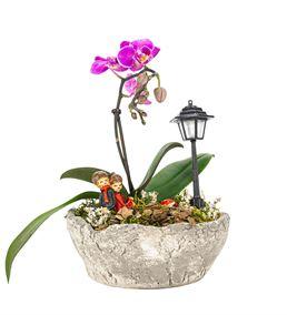Birch Serisi Tek Dal Mor Orkide Tasarım