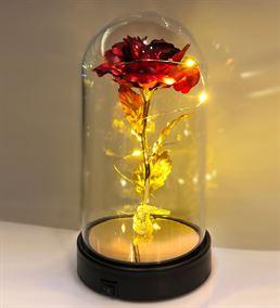 Cam Fanus Lamba Gold Kırmızı Gül Siyah Altlık