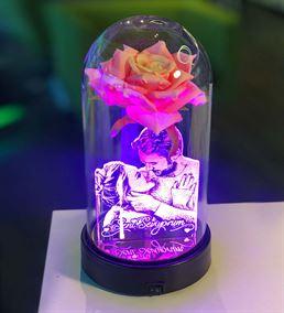 Cam Fanus Pembe Gül Resimli 3d Gece Lambası