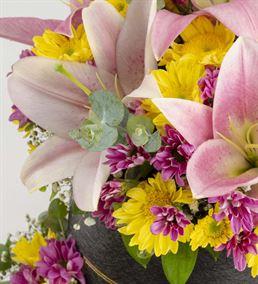 Case Diana Kutuda Renkli Kokulu Çiçekler