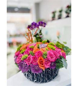 Dekoratif Saksı Mini Orkide Güller