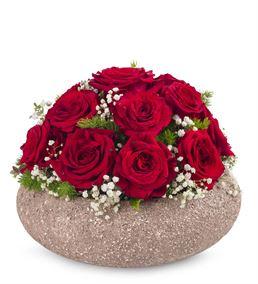 Dekoratif Saksıda 17 Kırmızı Güller
