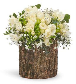 Doğal Kütükte Beyazın Büyüsü Frezya Aranjmanı
