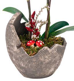 Egg Serisi Mini 2 Dal Mor Orkide Tasarım