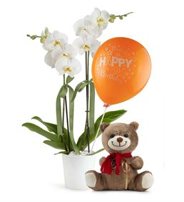 Happy Birthday Balonlu Ayıcık ve Orkide Çiçeği