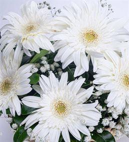 Huzur Esintisi 5 Beyaz Gerbera Çiçek Sepeti