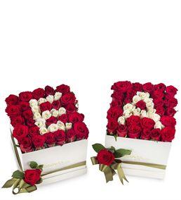İkili Kişiye Özel Aşkın Baş Harfi Güller
