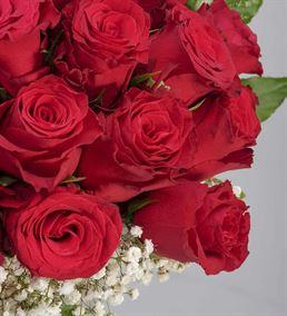 Kalplerin Kraliçesi 21 Kırmızı Güller