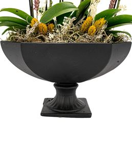 Katrina Mini Sarı Orkideler Serisi
